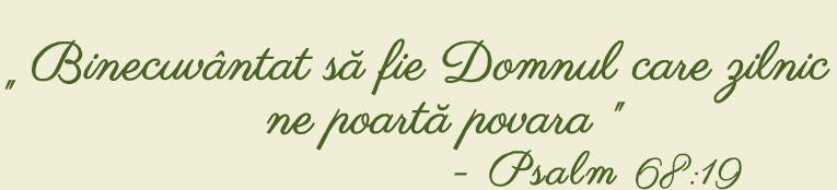 Camin Varstnici Fileo Motto